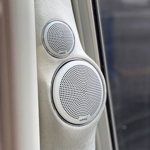 perfektionierter Audifrog Lautsprecher Einbau