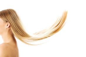 Haare Haarausfall Haarlaser Trichogramm Dermatologie Hautarzt Sankt Wendel Saarland Salzmann
