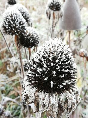 Insektenhotel im winterlichen Garten