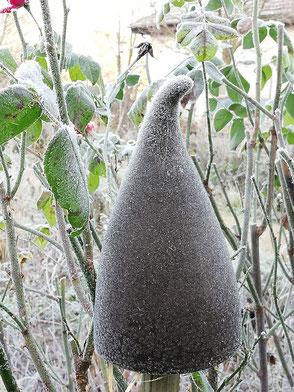 Frostsichere Keramik - Käferzipfel