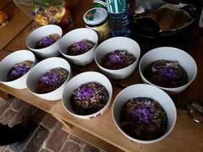 WerkstattMurberg.at Kraeuterkochkurs Mahlzeit Bild 5 Chiasamen mit essbaren Blumen