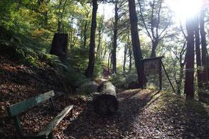 Naturlehrpfad Altena