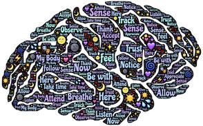 Das menschliche Denken, Gehirn, Denken entstehen, Macht der Gedanken, Wampel, Wampel.net, Pädagogik, Kinderbücher, Blog für ERZIEHER und Eltern