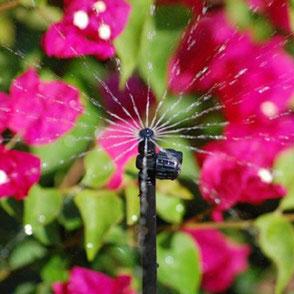 Microbewässerung  Für Kübel und Töpfe die optimale Bewässerung