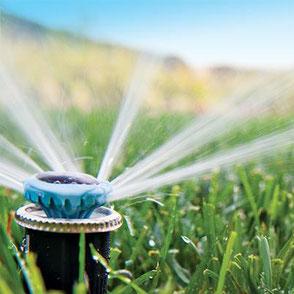 Professionelle Bewässerungssysteme