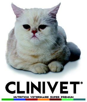 clinivet chat