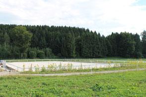 Pferdepension Tüfi Sandplatz