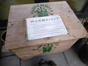 Eine Wurmkiste macht kompostieren unkompliziert auch in der Kita möglich