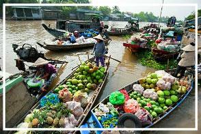 Mekong Delta tour homestay