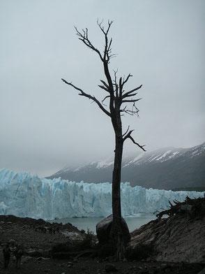Chile - Chili