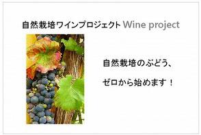 自然栽培ワインプロジェクト
