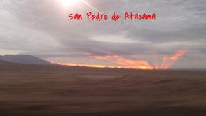 http://www.montenegrosneocios.com/san pedro/.