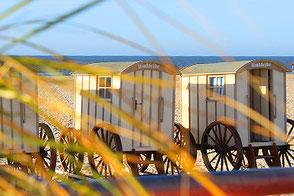 Aktivitäten auf Norderney - Infos für Feriengäste Ferienwohnungen auf Norderney