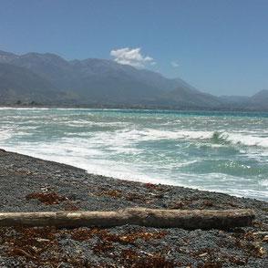 Strand von Kaikoura