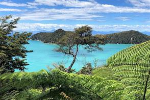 Traumreisen nach Neuseeland - Equatours