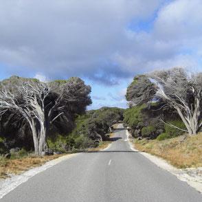 Australien Abenteuer
