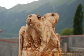 Murmeltiere von Lkhagvadorj Dorjsuren (Mongolei)