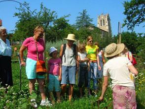 jardin des plantes à couleur essertines en donzy en terre de tisseurs