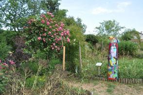 jardin des plantes à couleurs