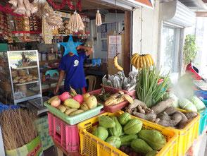 フィリピン シキホール島 スーパーマーケット 菜ちゃんのページ
