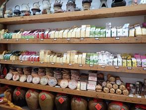 台湾 台北 旅行記 烏龍茶 お茶屋さん 菜ちゃんのページ