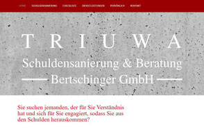 Schuldensanierung Aargau, Bertschinger GmbH