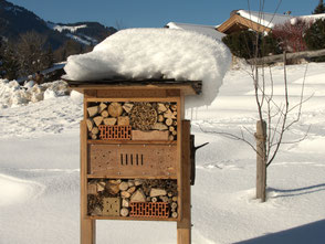Insektenhotel im Winter