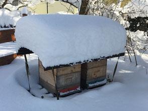 Fluglöcher voll Schnee