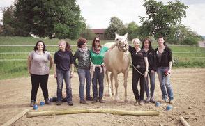 pferde helfen Menschen