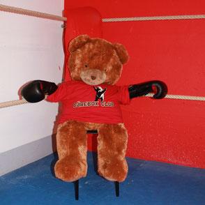 Finn der Bär, das Maskottchen des Bärebox Clubs