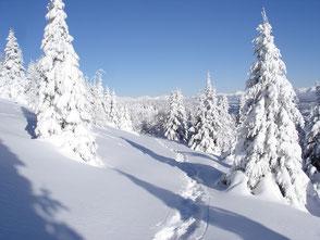 Winterurlaub und Angebote, Gasthof zur Linde