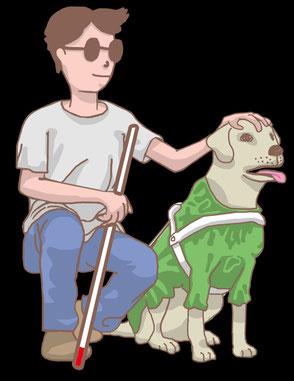 盲導犬を傷つけないで!