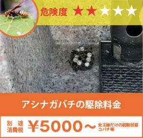 山茶花の中のスズメバチの駆除