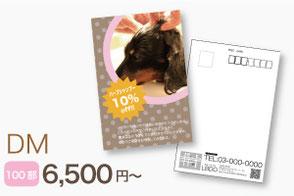 ドッグサロン・ペット関連のDM・ハガキ作成