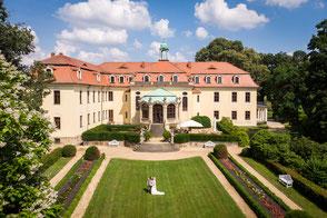 Hochzeit Schloss Proschwitz, Hochzeitsfotograf Schloss Proschwitz, Heiraten Schloss Proschwitz, Schloss Proschwitz Hochzeit Fotograf, Schloss Proschwitz Meißen Hochzeitsfotos, Hochzeitsfotos Schloss Proschwitz