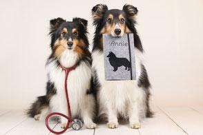 Impfpasshülle, Hunde, Tierarzt, personalisiert, handmade