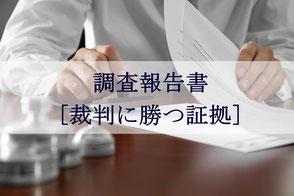 横浜 調査 ダルタン横浜探偵局 調査報告書