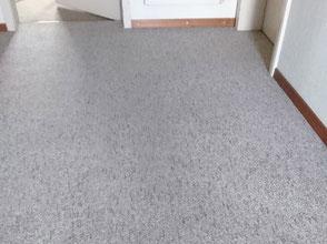 Teppich, imprägnieren, extrahieren, Bürstreinigung, Schmutzschleuse, Sauberlaufzone, Reinigung, Schutz und Pflege