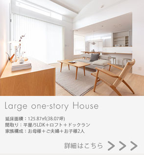 Large one-story Houseの画像