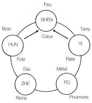 Source : Pratique du massage chinois, Y-W Chen