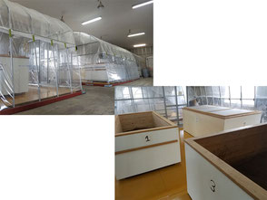greenhouses and fermenters