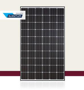 Q-CELLS Q.PEAK-G4.1 Solarmodul
