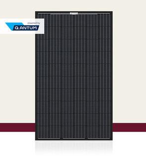 Q-CELLS Q.PEAK BLK-G4.1 Solarmodul