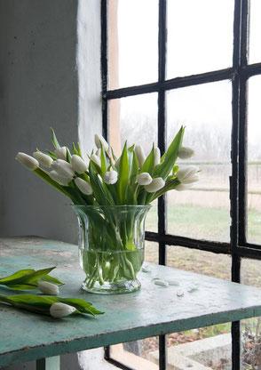Glas Vase CLARA AFFARI Ambiente Collection Tulpen schlicht geschwungen Deko Landhaus