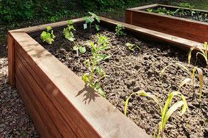 Projekt Schulgarten | u. a. Finanzierung von Hochbeeten, Gartenwerkzeugen, Gartenhaus.