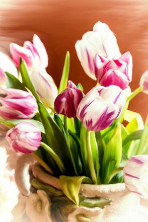 stillleben-tulips-tulpenstrauss-weiss-lila-makro-painting