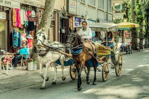 Pferde-Kutschfahrt in Istanbul Prinzeninseln