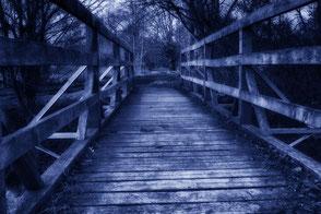 Holzbrücke zwischen Bäumen-Nacht