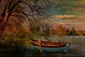 Ruderboot am See unter Trauerweide