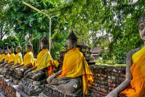 buddhas-in-ayutthaya